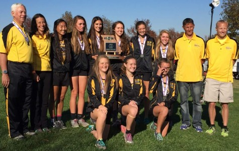 Girls' Cross Country places 2nd at State