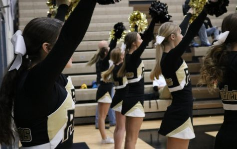 Cheer: Success at state